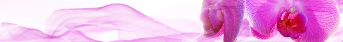 Massagepraktijk Trans Esbima